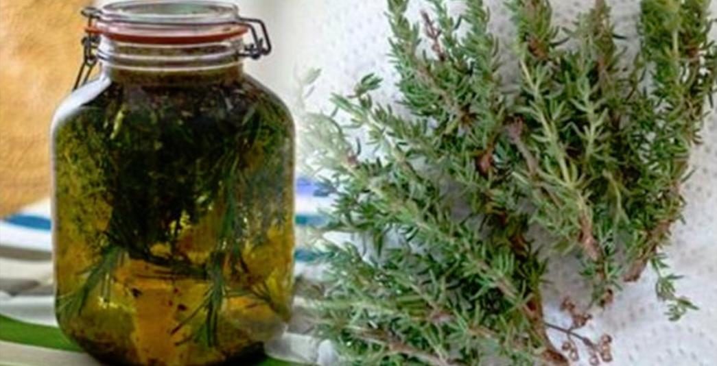 5 plante care combat durerile de articulaţii | centru-respiro.ro