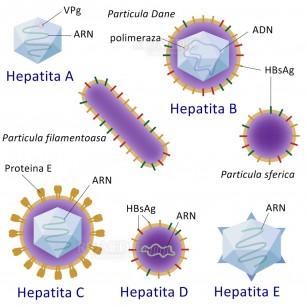 hepatita virala c si dureri articulare