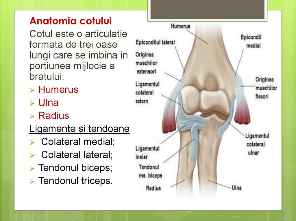 leziuni ale articulației cotului antebrațului și mâinii