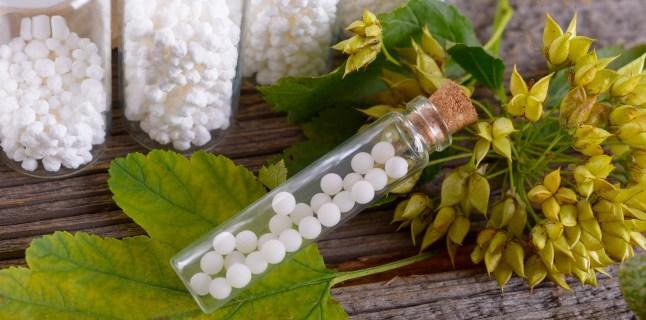 remedii homeopate tratamentul artrozei