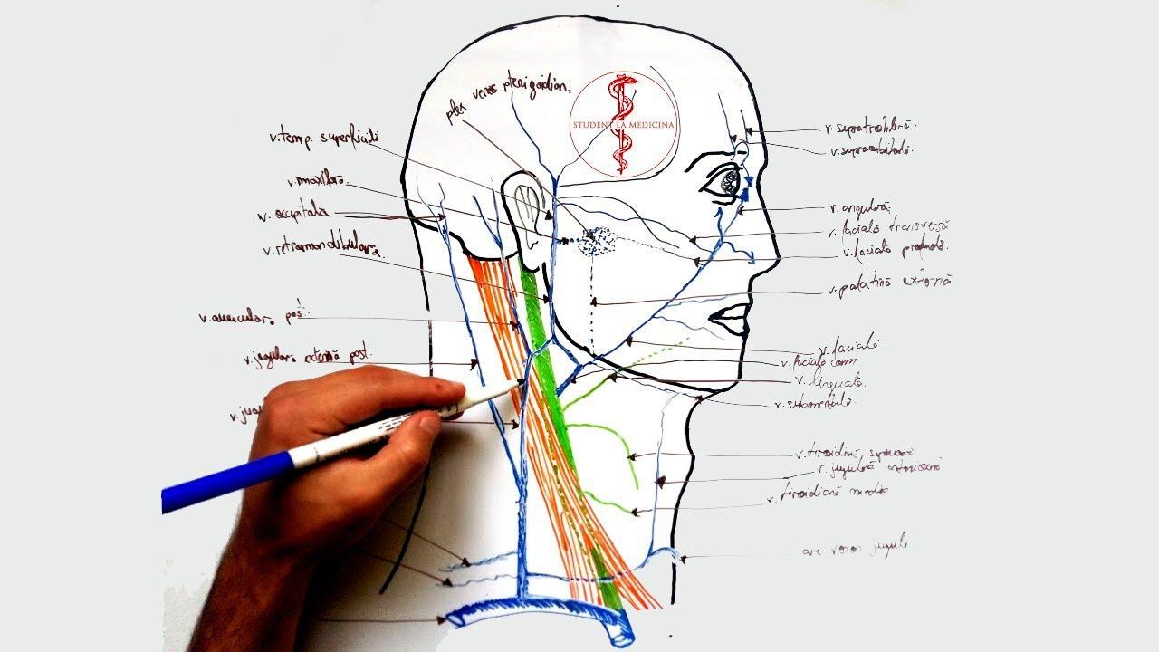 articulații dureroase ale brațului stâng