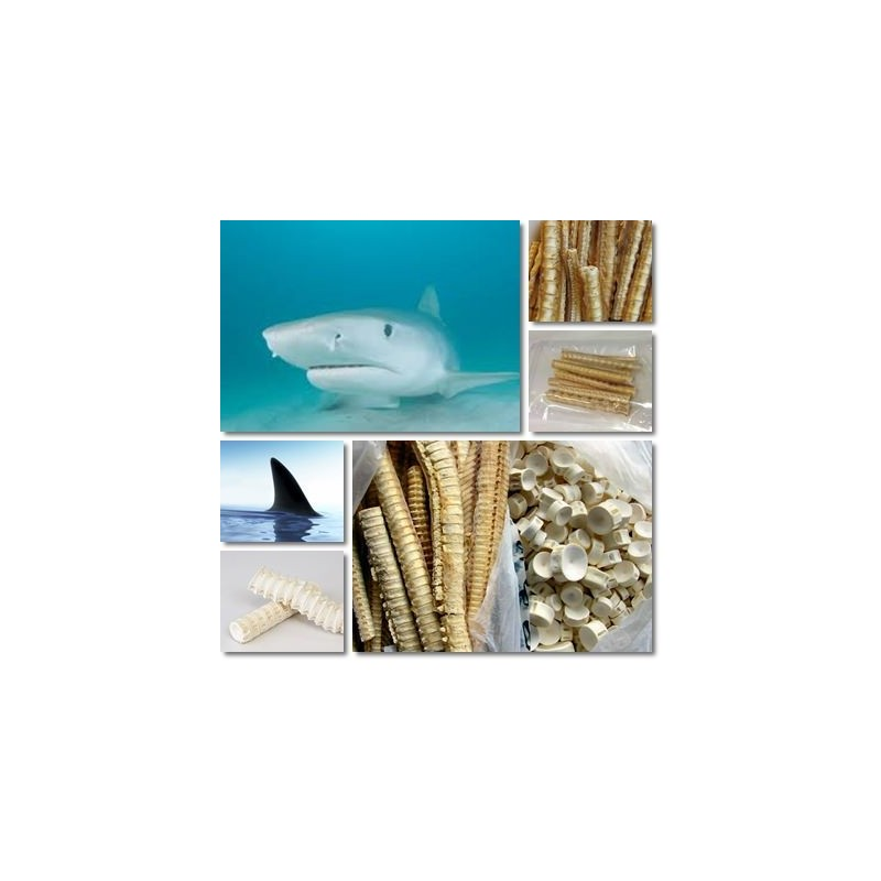 tratamentul articulațiilor ficatului de rechin