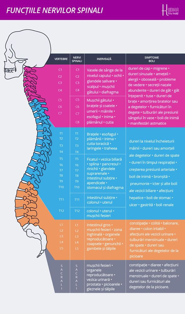 articulațiile brațelor picioarelor și ale coloanei vertebrale)