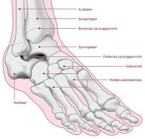 Osteocondroza articulației șoldului la 4 grade