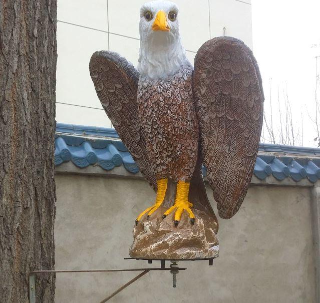 cumpărare de artropant în vultur)