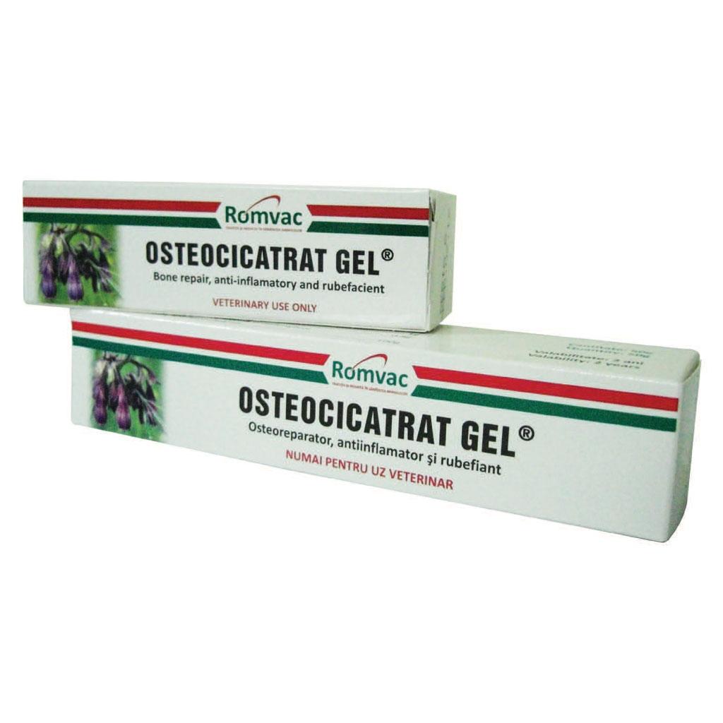 cel mai bun gel pentru osteochondroză)