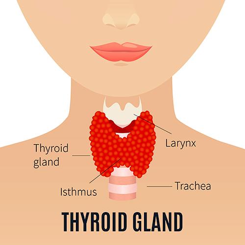 hipotiroidism și dureri articulare