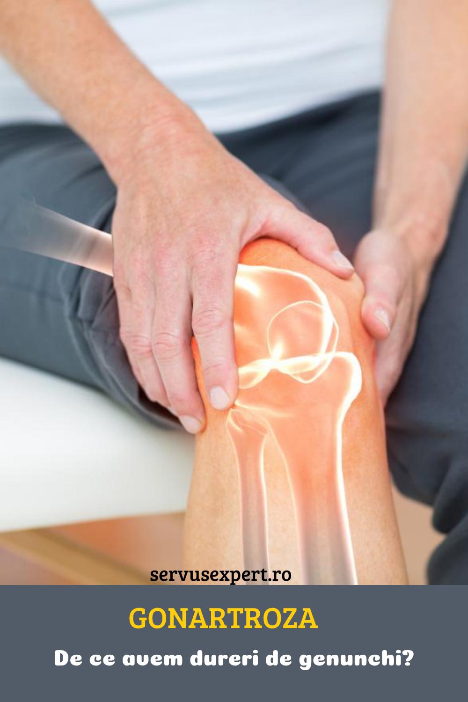 tratamentul nutriției pentru artroză)