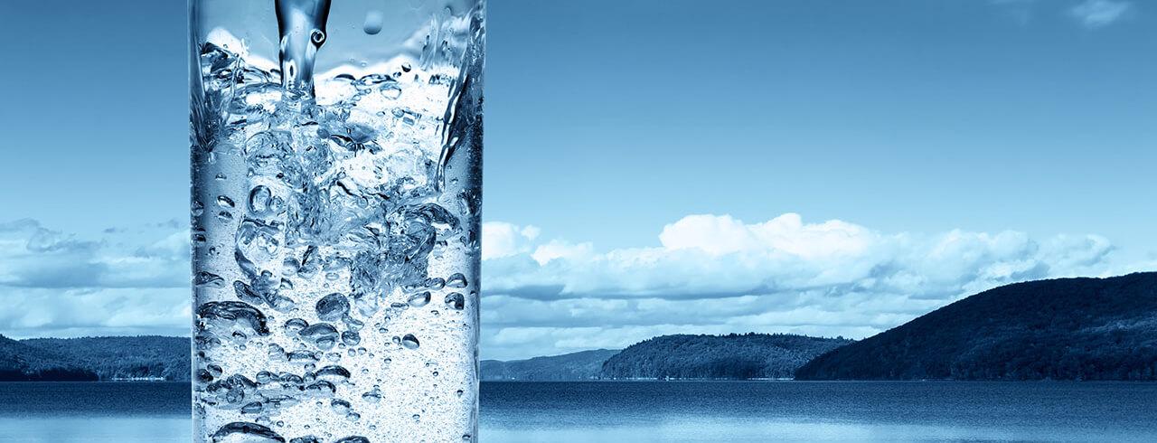 apă minerală pentru boala articulară dureri de cot presă bancă franceză