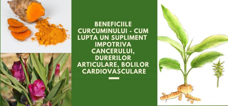 Panaceu pentru bolile articulare. Insomnia si homeopatia 2