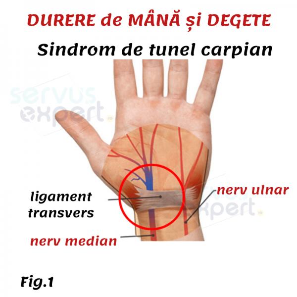 durere interfalangiană a unui deget)