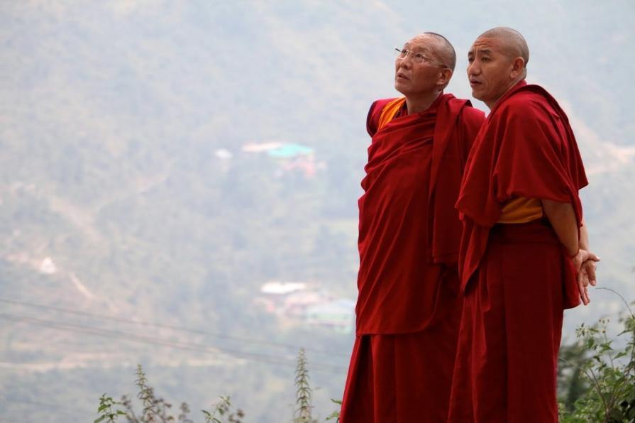 Medicina tibetană nic analgezic crema pentru artrita reumatoida