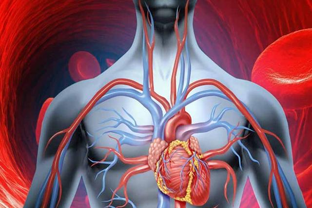Medicamente pentru a îmbunătăți circulația sângelui comun, Substanțe care acționează asupra PNS