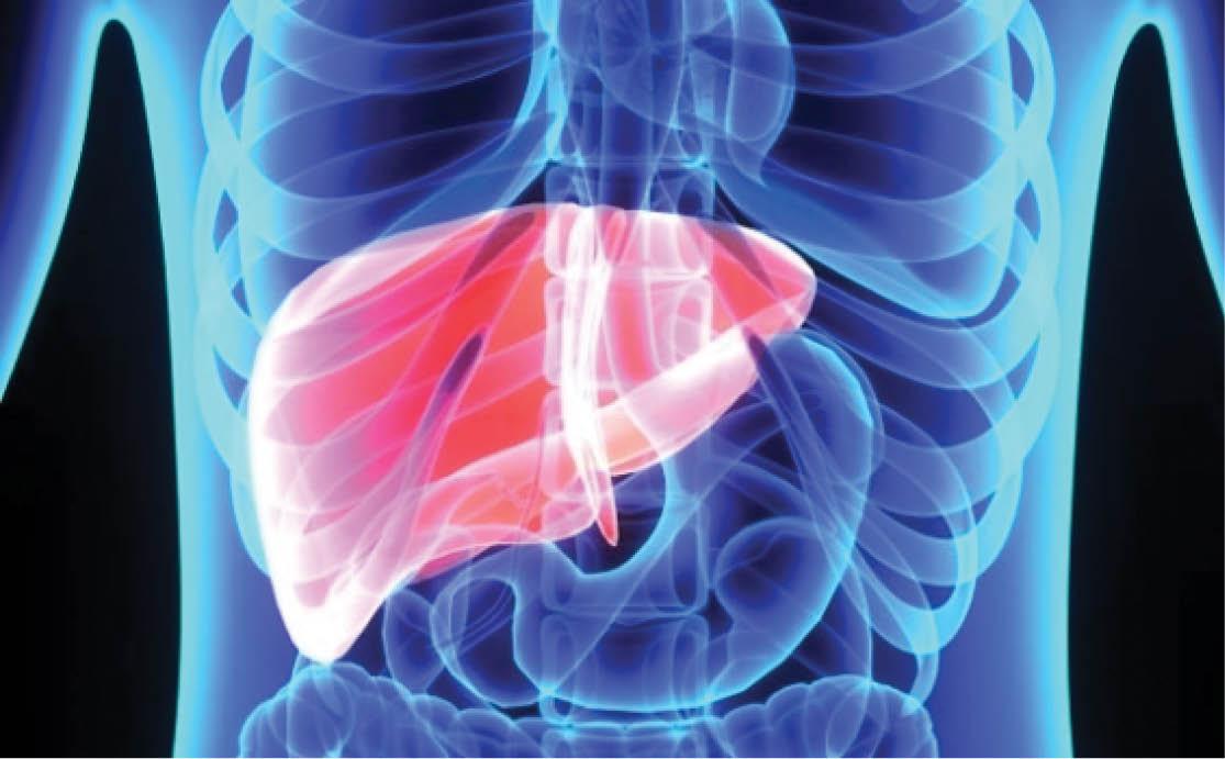 simptomele bolilor hepatice la nivelul articulațiilor
