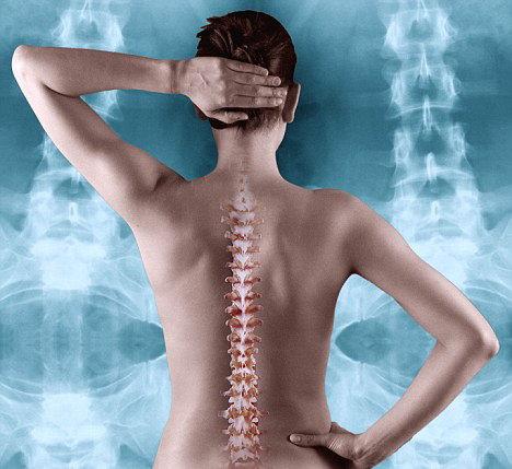 medicament pentru refacerea cartilajului coloanei vertebrale leac pentru dureri articulare bunica