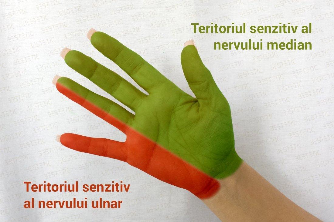 articulațiile rănesc mâinile amorțite