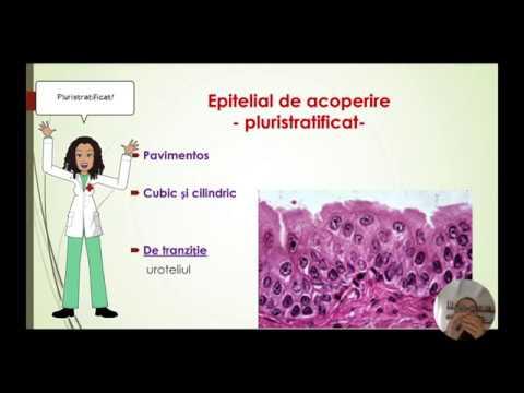 articulațiile rănite din proteine