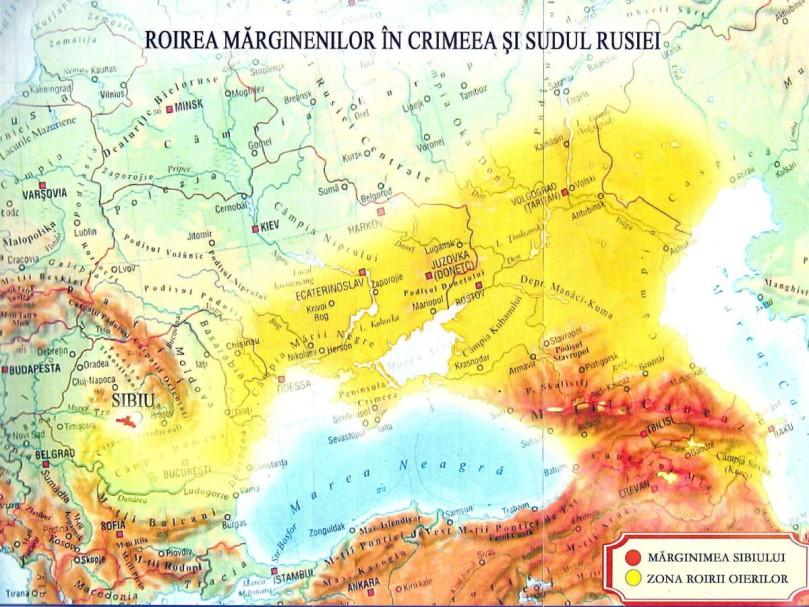 tratament comun în Caucazul de Nord
