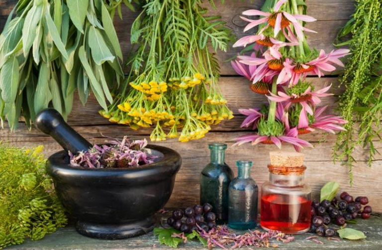 Balsamul comun Schuster Altai balsam pe site-ul magazinului online