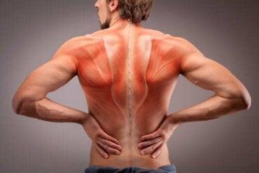 calmante pentru articulații și mușchii spatelui artrita artroso a articulațiilor mici ale mâinilor