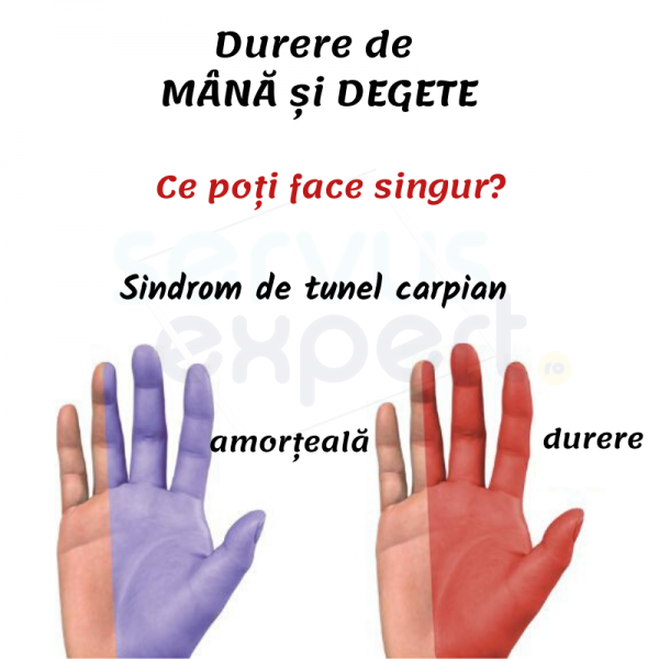 dureri de umăr și amorțeală a degetelor)