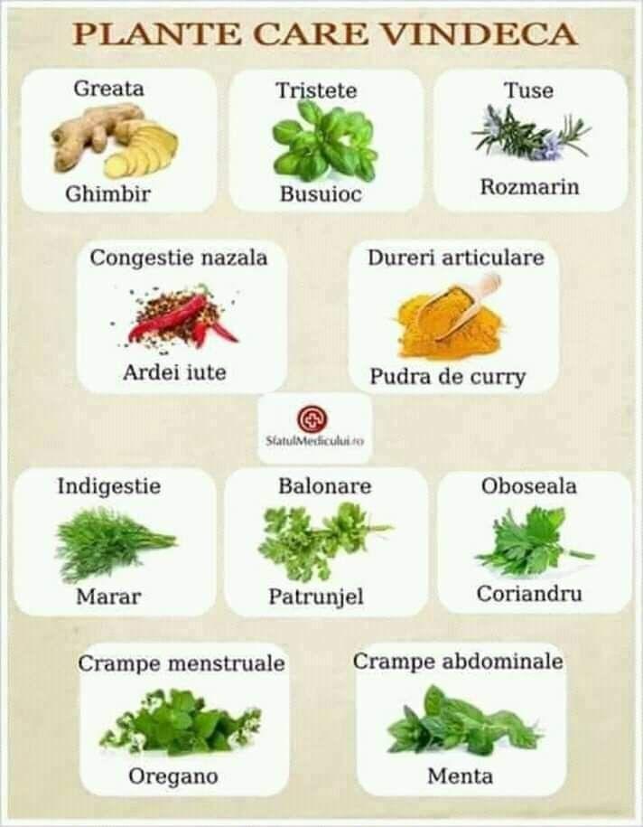 dieta de nutriție a durerii articulare