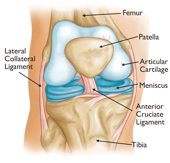 cum să tratezi un butuc articular al genunchiului